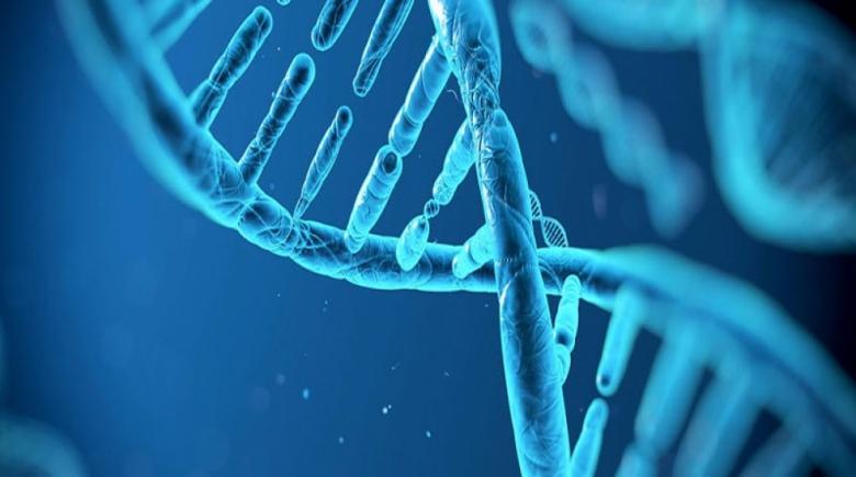 Telomer tedavisi nedir? Telomer tedavisi nasıl yapılır?